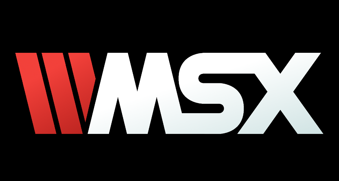vicious-viper-wmsx-logo